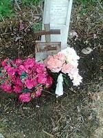 My friend Susan and I drove to Concrete and put flowers on the grave of Great Grandmother Policarpia Perez de Garcia. I usually place an angel on the graves of my grandmothers. I wrote my name and phone number on the base of the angel. I am hoping ther...